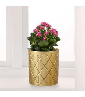 گلدان طلائی ایکیا مدل VINDFLÄKT سایز 11سانتیمتری
