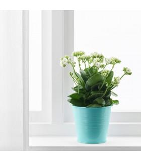 گلدان ایکیا مدل SOCKER سایز 14 سانتیمتری