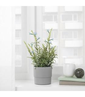 گل و گلدان اسطوخودوس آبی ایکیا مدل FEJKA